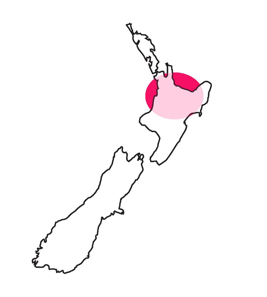 Auckland, Waikato地区(オークランド、ハミルトン近辺)