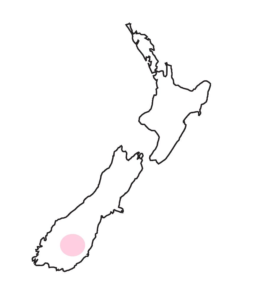 Otago地区(クロムウェル、アレクサンドラ近辺)