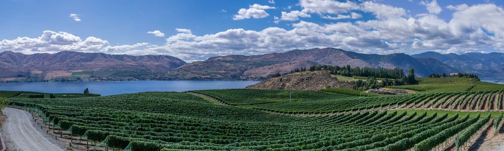 ニュージーランドへの食品の持ち込み、キーワードは「ニュージーランドの農業に害があるかどうか?」です